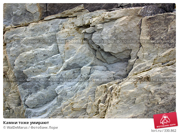 Камни тоже умирают, фото № 330862, снято 23 мая 2017 г. (c) WalDeMarus / Фотобанк Лори