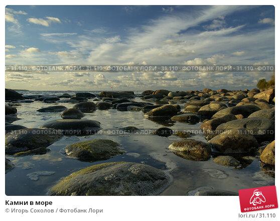 Камни в море, фото № 31110, снято 25 апреля 2017 г. (c) Игорь Соколов / Фотобанк Лори