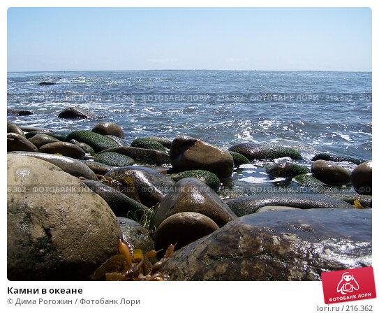 Камни в океане, фото № 216362, снято 12 июня 2006 г. (c) Дима Рогожин / Фотобанк Лори