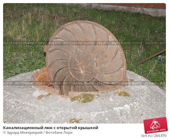 Купить «Канализационный люк с открытой крышкой», фото № 264870, снято 24 апреля 2008 г. (c) Эдуард Межерицкий / Фотобанк Лори