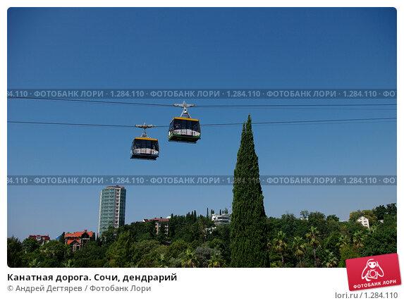 Купить «Канатная дорога. Сочи, дендрарий», фото № 1284110, снято 31 августа 2009 г. (c) Андрей Дегтярев / Фотобанк Лори