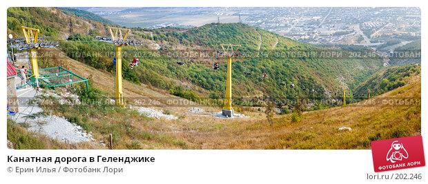 Купить «Канатная дорога в Геленджике», фото № 202246, снято 15 августа 2007 г. (c) Ерин Илья / Фотобанк Лори