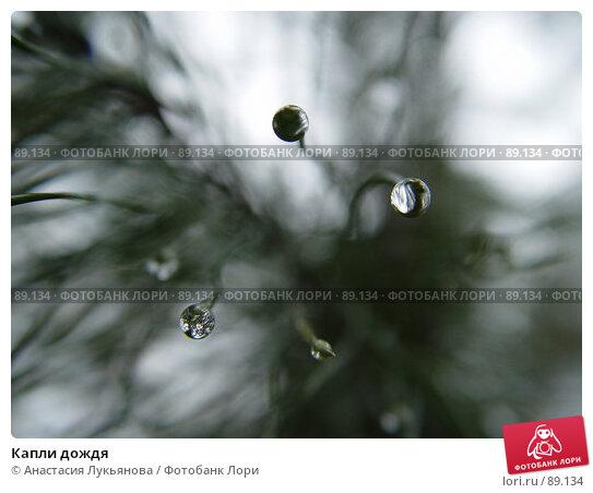 Капли дождя, фото № 89134, снято 18 марта 2007 г. (c) Анастасия Лукьянова / Фотобанк Лори