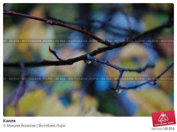 Капля, фото № 48854, снято 1 октября 2006 г. (c) Максим Яковлев / Фотобанк Лори