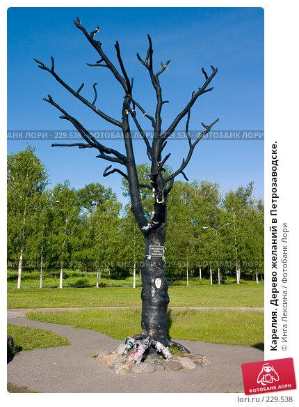 Карелия. Дерево желаний в Петрозаводске., фото № 229538, снято 10 июня 2007 г. (c) Инга Лексина / Фотобанк Лори