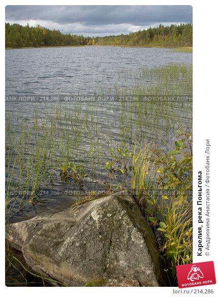 Карелия, река Поньгома, фото № 214286, снято 15 сентября 2007 г. (c) Андрюхина Анастасия / Фотобанк Лори