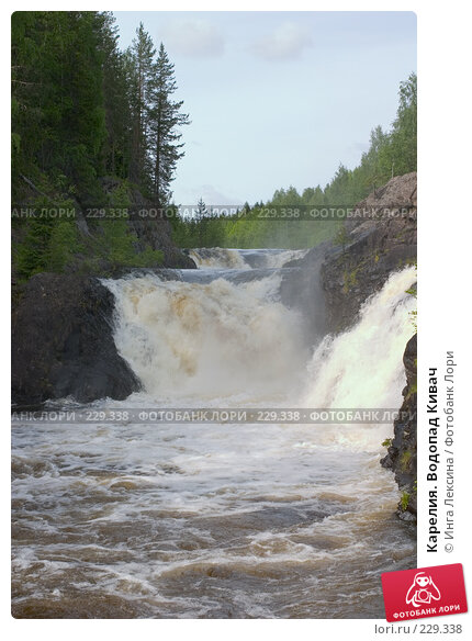 Карелия. Водопад Кивач, фото № 229338, снято 10 июня 2007 г. (c) Инга Лексина / Фотобанк Лори