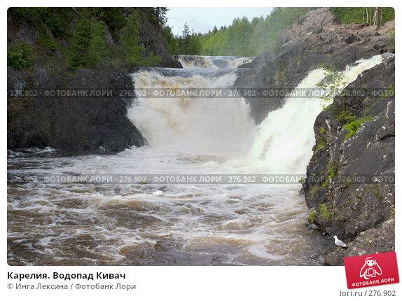 Карелия. Водопад Кивач, фото № 276902, снято 10 июня 2007 г. (c) Инга Лексина / Фотобанк Лори