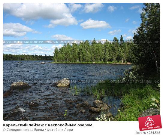 Карельский пейзаж с неспокойным озером, фото № 284566, снято 2 августа 2007 г. (c) Солодовникова Елена / Фотобанк Лори