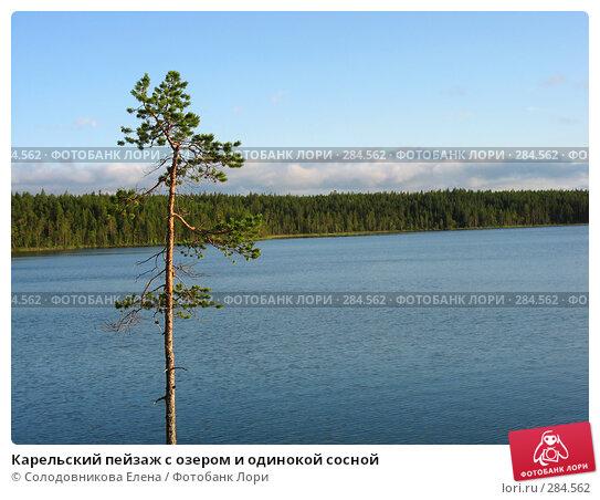 Карельский пейзаж с озером и одинокой сосной, фото № 284562, снято 29 июля 2007 г. (c) Солодовникова Елена / Фотобанк Лори