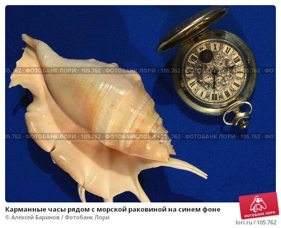 Карманные часы рядом с морской раковиной на синем фоне, фото № 105762, снято 26 сентября 2007 г. (c) Алексей Баринов / Фотобанк Лори