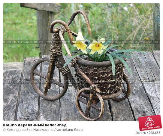Купить «Кашпо деревянный велосипед», фото № 298638, снято 17 августа 2005 г. (c) Комоедова Зоя Николаевна / Фотобанк Лори