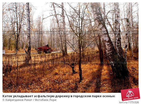 Купить «Каток укладывает асфальтную дорожку в городском парке осенью», фото № 173026, снято 30 октября 2007 г. (c) Хайрятдинов Ринат / Фотобанк Лори