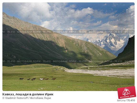 Кавказ, лошади в долине Ирик, фото № 70410, снято 21 июля 2007 г. (c) Vladimir Fedoroff / Фотобанк Лори