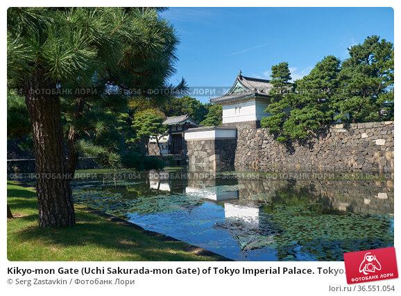 Kikyo-mon Gate (Uchi Sakurada-mon Gate) of Tokyo Imperial Palace. Tokyo. Japan (2019 год). Стоковое фото, фотограф Serg Zastavkin / Фотобанк Лори