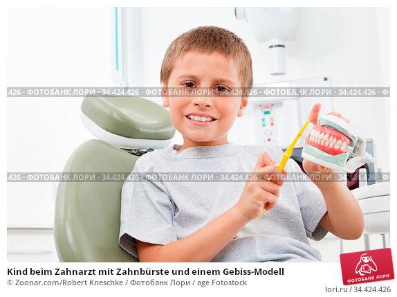 Kind beim Zahnarzt mit Zahnbürste und einem Gebiss-Modell. Стоковое фото, фотограф Zoonar.com/Robert Kneschke / age Fotostock / Фотобанк Лори
