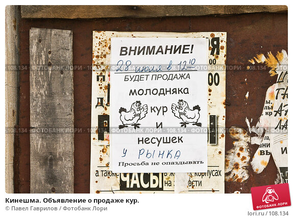 Кинешма. Объявление о продаже кур., фото № 108134, снято 25 июля 2006 г. (c) Павел Гаврилов / Фотобанк Лори