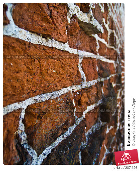 Купить «Кирпичная стена», фото № 287126, снято 10 мая 2008 г. (c) Liseykina / Фотобанк Лори