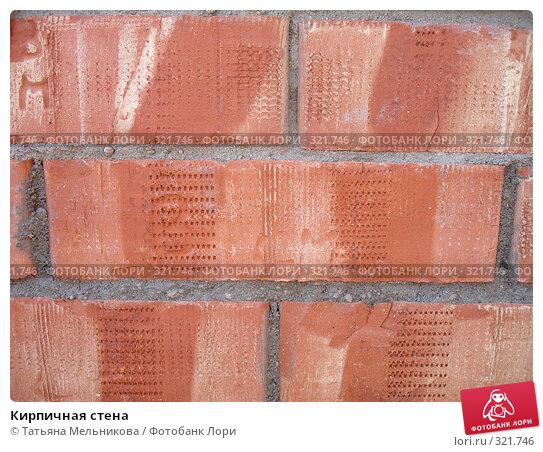 Купить «Кирпичная стена», фото № 321746, снято 13 июня 2008 г. (c) Татьяна Мельникова / Фотобанк Лори