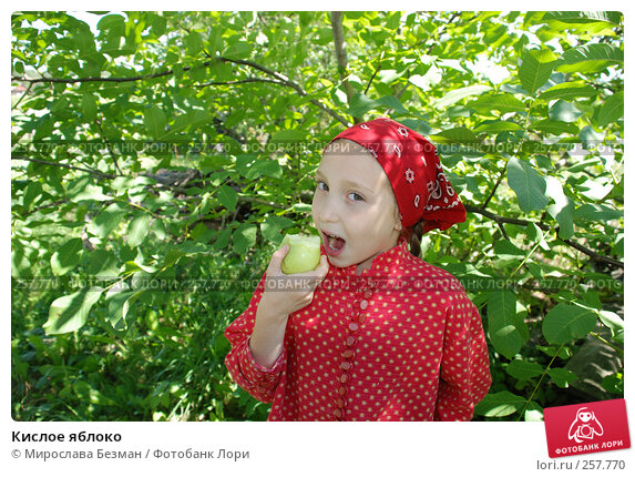 Кислое яблоко, фото № 257770, снято 24 июня 2017 г. (c) Мирослава Безман / Фотобанк Лори