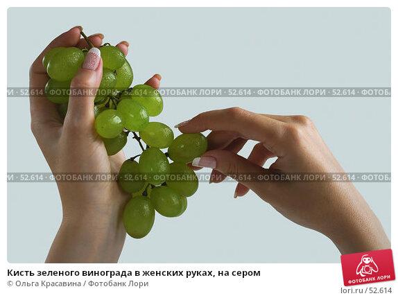 Кисть зеленого винограда в женских руках, на сером, фото № 52614, снято 13 июля 2006 г. (c) Ольга Красавина / Фотобанк Лори