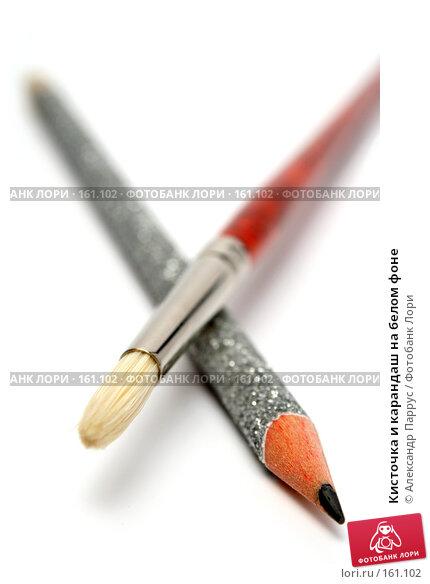 Кисточка и карандаш на белом фоне, фото № 161102, снято 7 октября 2006 г. (c) Александр Паррус / Фотобанк Лори