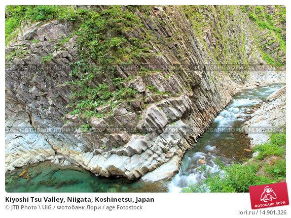 Купить «Kiyoshi Tsu Valley, Niigata, Koshinetsu, Japan», фото № 14901326, снято 18 июня 2018 г. (c) age Fotostock / Фотобанк Лори