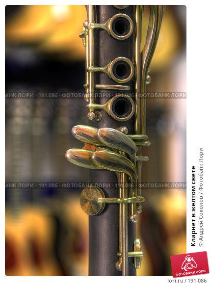 Кларнет в желтом свете, фото № 191086, снято 30 января 2008 г. (c) Андрей Соколов / Фотобанк Лори