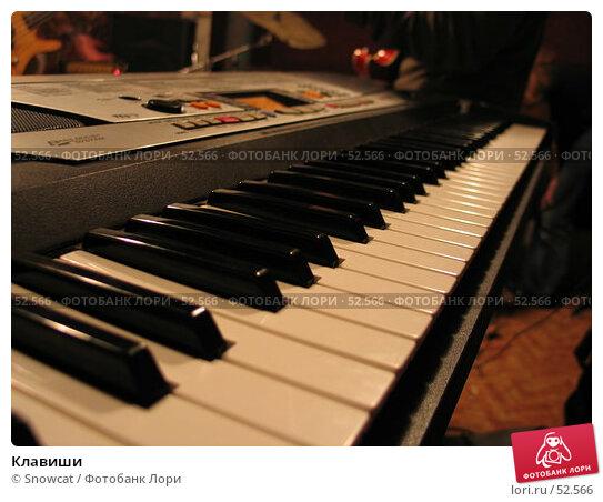 Клавиши, фото № 52566, снято 17 июня 2006 г. (c) Snowcat / Фотобанк Лори