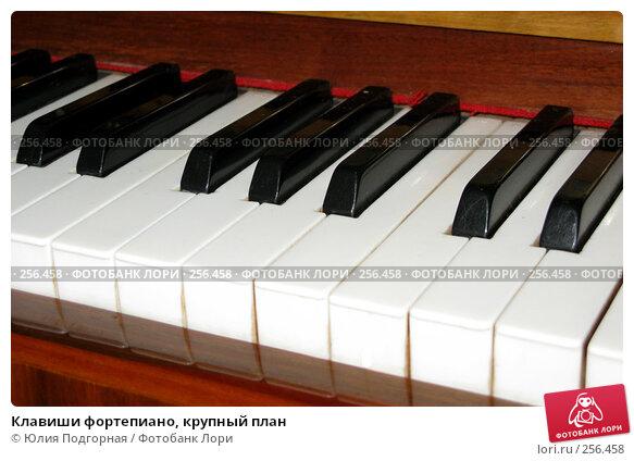Клавиши фортепиано, крупный план, фото № 256458, снято 12 апреля 2008 г. (c) Юлия Селезнева / Фотобанк Лори