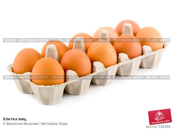 Клетка яиц, фото № 129410, снято 17 марта 2007 г. (c) Валентин Мосичев / Фотобанк Лори
