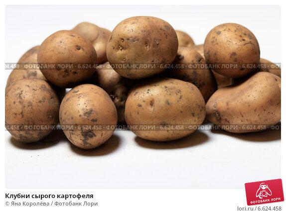 Купить «Клубни сырого картофеля», эксклюзивное фото № 6624458, снято 3 ноября 2014 г. (c) Яна Королёва / Фотобанк Лори