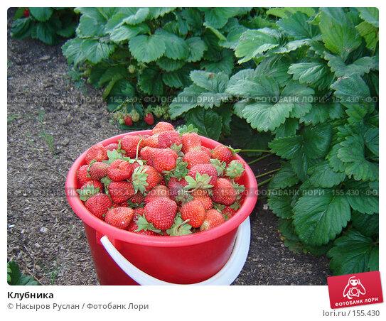 Клубника, фото № 155430, снято 30 июня 2007 г. (c) Насыров Руслан / Фотобанк Лори
