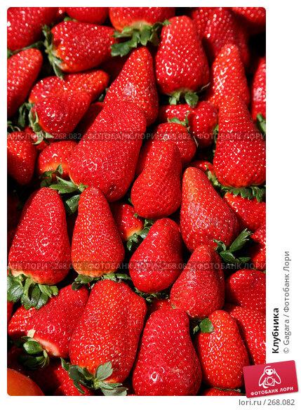 Клубника, фото № 268082, снято 8 марта 2008 г. (c) Gagara / Фотобанк Лори
