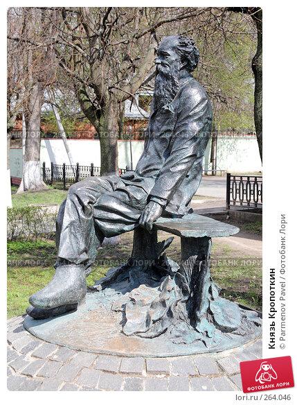 Князь Кропоткин, фото № 264046, снято 19 апреля 2008 г. (c) Parmenov Pavel / Фотобанк Лори