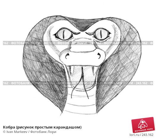Кобра (рисунок простым карандашом), иллюстрация № 243162 (c) Василий Каргандюм / Фотобанк Лори