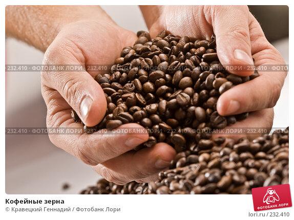 Кофейные зерна, фото № 232410, снято 1 ноября 2005 г. (c) Кравецкий Геннадий / Фотобанк Лори
