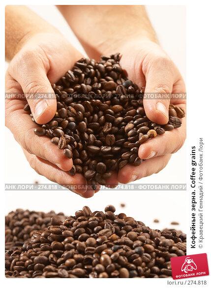Кофейные зерна. Coffee grains, фото № 274818, снято 1 ноября 2005 г. (c) Кравецкий Геннадий / Фотобанк Лори