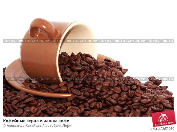 Кофейные зерна и чашка кофе, фото № 267050, снято 29 апреля 2008 г. (c) Александр Катайцев / Фотобанк Лори