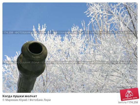 Когда пушки молчат, фото № 174258, снято 27 декабря 2007 г. (c) Марюнин Юрий / Фотобанк Лори