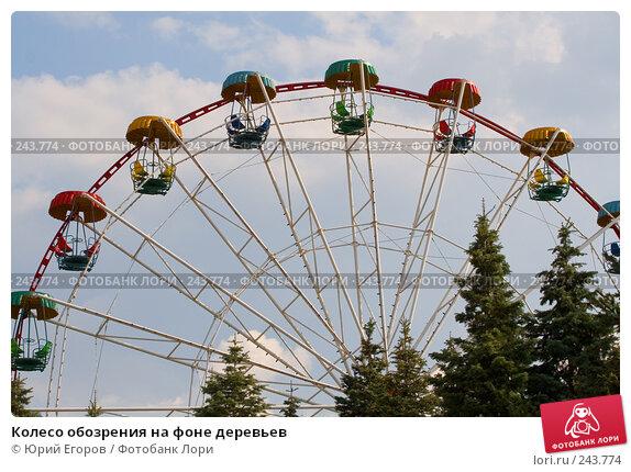 Колесо обозрения на фоне деревьев, фото № 243774, снято 5 апреля 2008 г. (c) Юрий Егоров / Фотобанк Лори