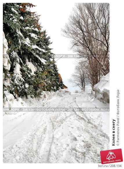 Колея в снегу, фото № 208134, снято 19 февраля 2008 г. (c) Parmenov Pavel / Фотобанк Лори