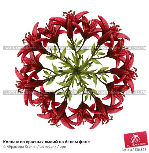 Коллаж из красных лилий на белом фоне, фото № 130878, снято 22 июля 2006 г. (c) Абрамова Ксения / Фотобанк Лори