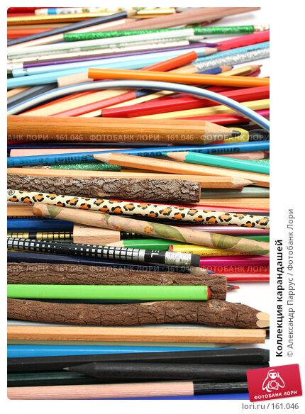 Коллекция карандашей, фото № 161046, снято 9 октября 2006 г. (c) Александр Паррус / Фотобанк Лори