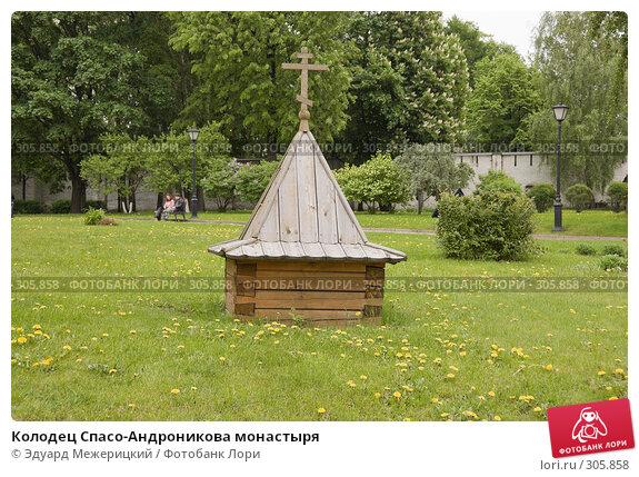 Колодец Спасо-Андроникова монастыря, фото № 305858, снято 18 мая 2008 г. (c) Эдуард Межерицкий / Фотобанк Лори