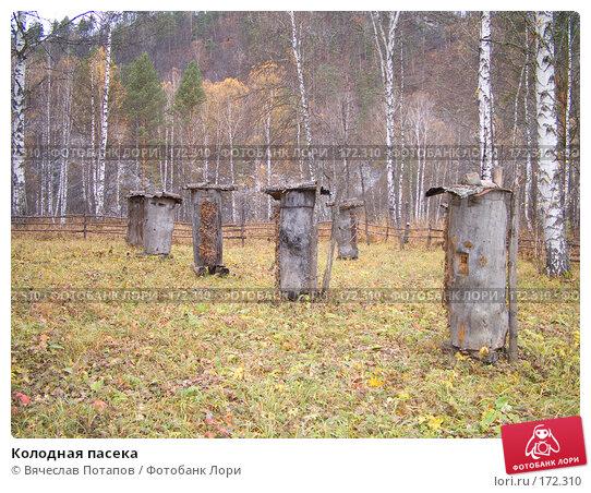Колодная пасека, фото № 172310, снято 18 октября 2007 г. (c) Вячеслав Потапов / Фотобанк Лори