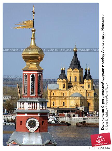 Купить «Колокольня Строгановской церкви и собор Александра Невского», фото № 251614, снято 13 апреля 2008 г. (c) Igor Lijashkov / Фотобанк Лори