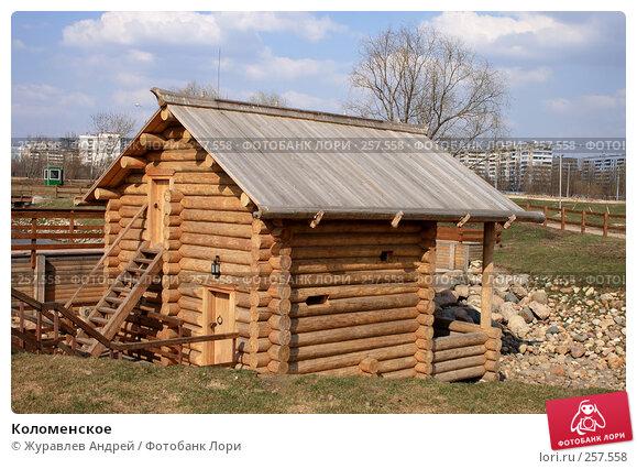 Коломенское, эксклюзивное фото № 257558, снято 6 апреля 2008 г. (c) Журавлев Андрей / Фотобанк Лори