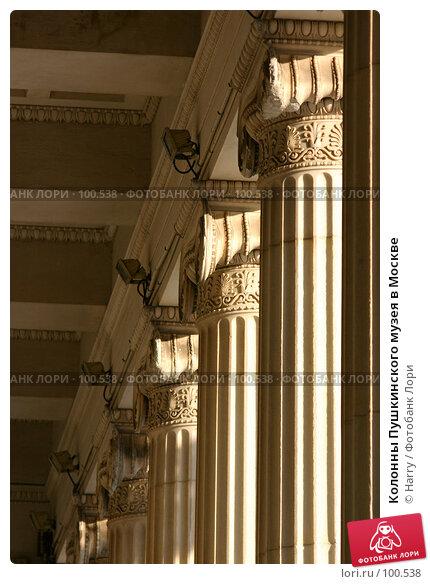 Купить «Колонны Пушкинского музея в Москве», фото № 100538, снято 28 ноября 2004 г. (c) Harry / Фотобанк Лори