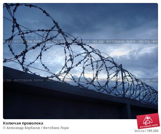 Колючая проволока, фото № 189266, снято 9 июля 2007 г. (c) Александр Бербасов / Фотобанк Лори
